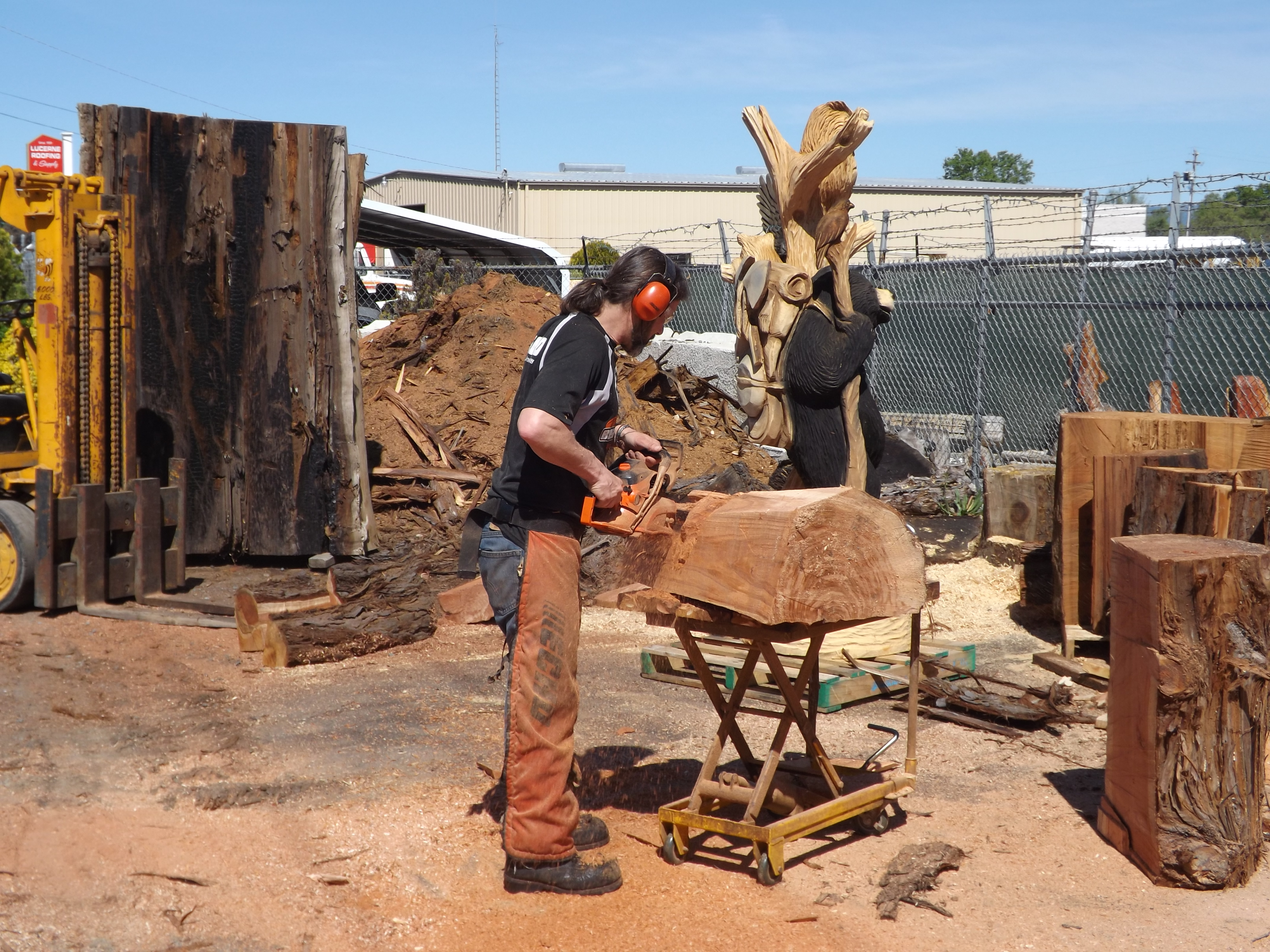 Award winning professional chain saw carving in lake
